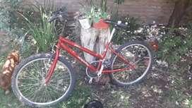 Se vende bici dama