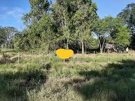 Terreno a la venta..zonal de Monte Alto. Resistencia