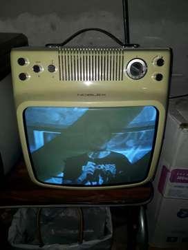 Televisor Noblex Micro 14 soy de Varela