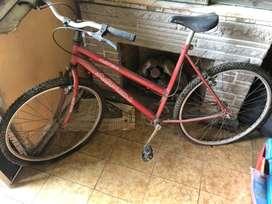 Biciclita aspen