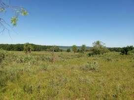 Terreno / chacra de 3 hectáreas en Garupá en liquidación