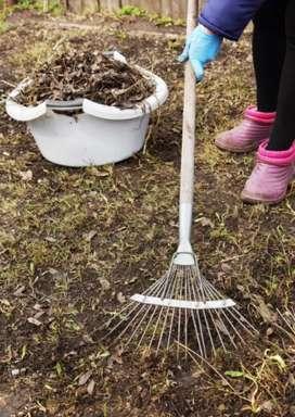 Trabajo de cortar pasto, limpieza de patio y fondo