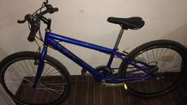 Bicicleta steep p.
