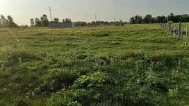 Terreno san vicente