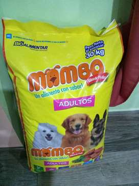 Comida para perritos y gatitos