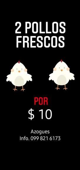 Venta de pollos a domicilio y para negocio 2 por $10