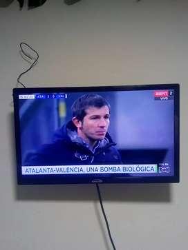 Tv de 24 pg con tdt poco uso con base