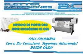 PLOTEO en cuarentena  PLOTER DE PLANOS CAD AUTOCAD 4000 pliegolineacolor
