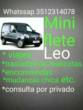 Mini Flete. Leo