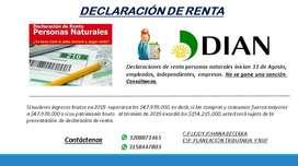 CONTADOR PUBLICO: DECLARACION DE RENTA
