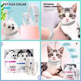 Collar Antipulgas Antiparasitario Gatos Perros