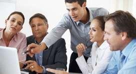 Asesor de tesis, planes y estudios de mercado
