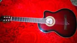 Guitarra electroacústica palmer