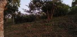 5 Fanegadas cerca hacienda dos maderos