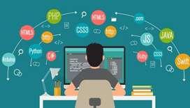 Desarrollo de Aplicaciones Web, Móviles, JS, Android Studio