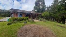 Finca con bosque nativos y aguas de nacimientos en guarne vereda yolombal para las personas amantes de la naturaleza