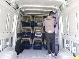 KENNEL para transporte de mascotas aceptados por aerolíneas IATA pet 300 80x56x60