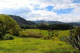 En Venta Terreno de 3730m2 en Motupe, Loja
