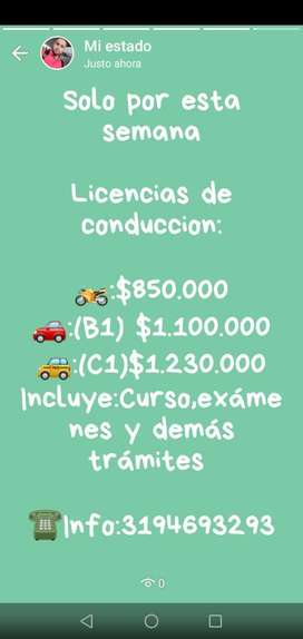 Licencias de Conduccion