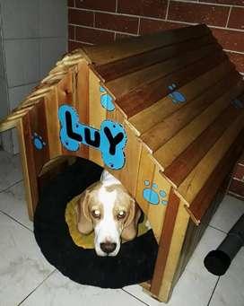 Casas medianas en Madera para Perros