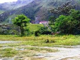 Terreno 8 mil hectáreas Huánuco.  Bajó de precio!