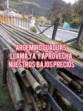 bambu argemiro