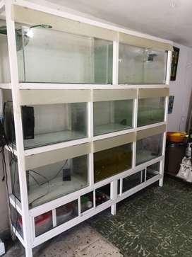 Mueble con acuarios