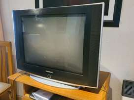 Vendo Tv Pantalla Plana 29