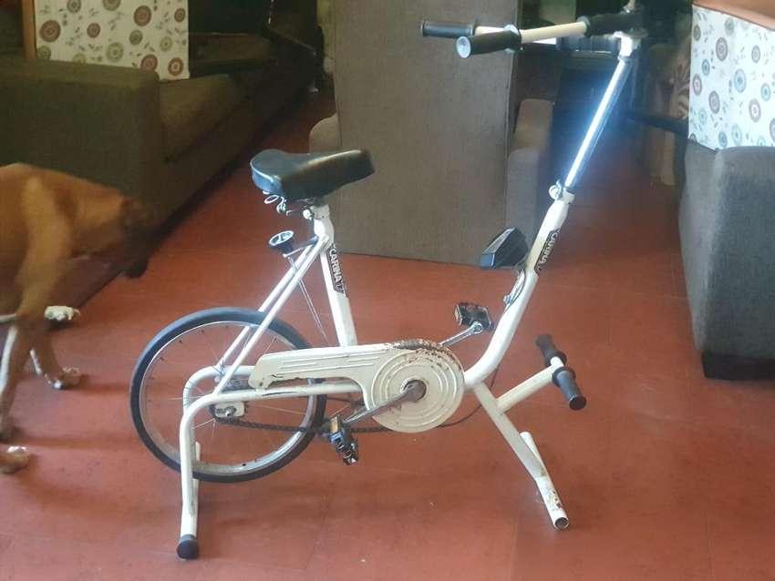 Bicicleta Fija con Remo 0