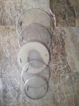5 Parches marca Remo usados 10, 12, 14, 14 y 16 pulgadas