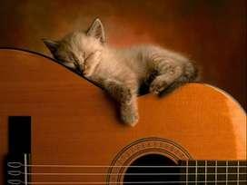 Clases de Guitarra Iniciación  Principiantes