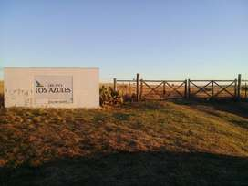 VENDO CAMPO a 22 km de Bahía Blanca