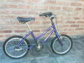 Bicicleta niño Rod 14